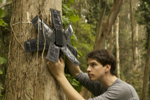 These Geeky Eco-Warriors Want Your Old Phone to Help Stop Illegal Deforestation