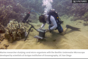 New underwater microscope provides ringside seat to coral turf wars